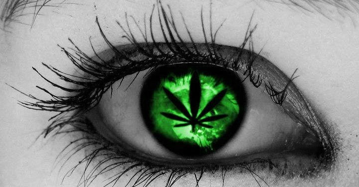 Weed And Glaucoma