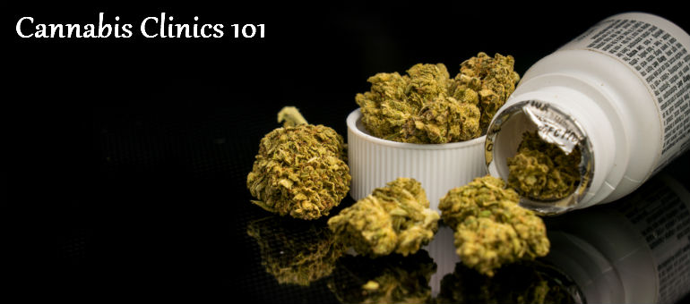 Cannabis Clinics 101