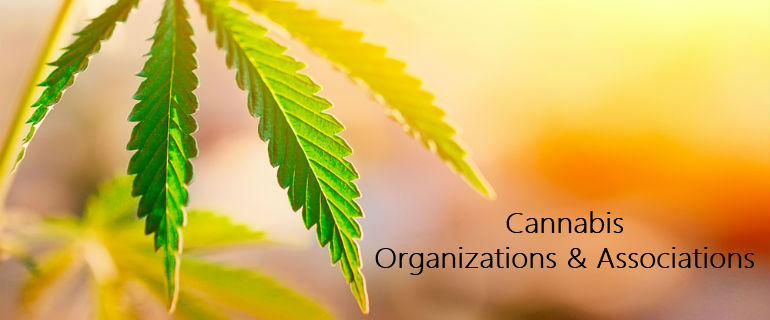 Cannabis Organizations and Associations