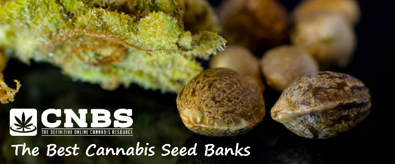 CNBS Best Cannabis Seed Banks