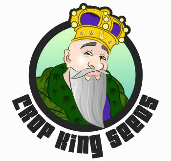 Crop King Seeds