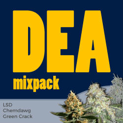 ILGM DEA Mix Seed Pack