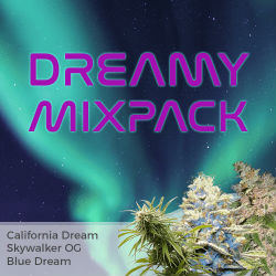 ILGM Dreamy Mix Seed Pack