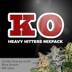 ILGM Heavy Hitters Mix Seed Pack