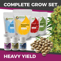 ILGM High Yield Marijuana Grow Kit
