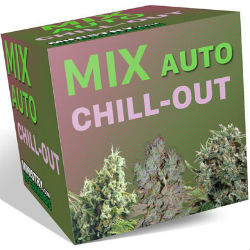 Ministry of Cannabis Chill Out Mix Pack