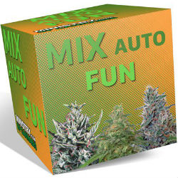 Ministry of Cannabis Fun Mix Pack
