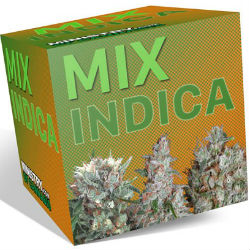 Ministry of Cannabis Indica Mix Pack