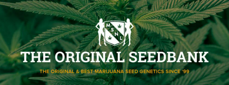 MSNL Seed Bank NL Seeds
