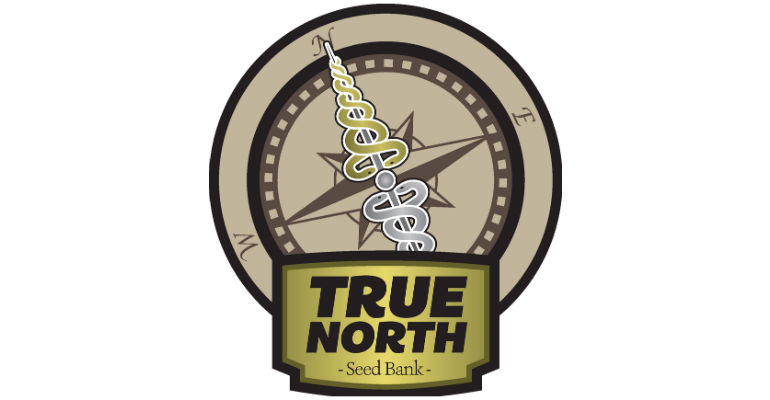 The Truth About True North Seed Bank: A Complete 2019 Review