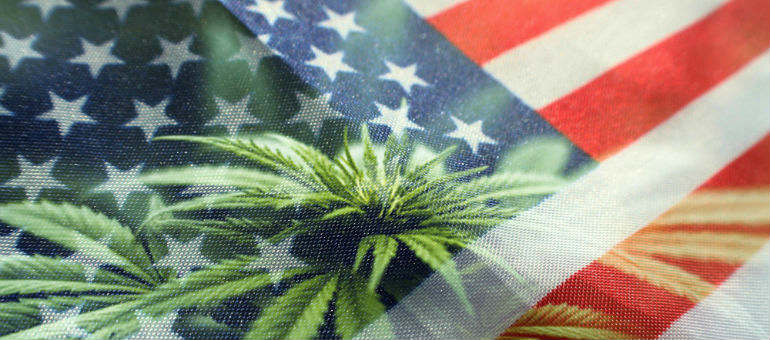 United States Flag Cannabis