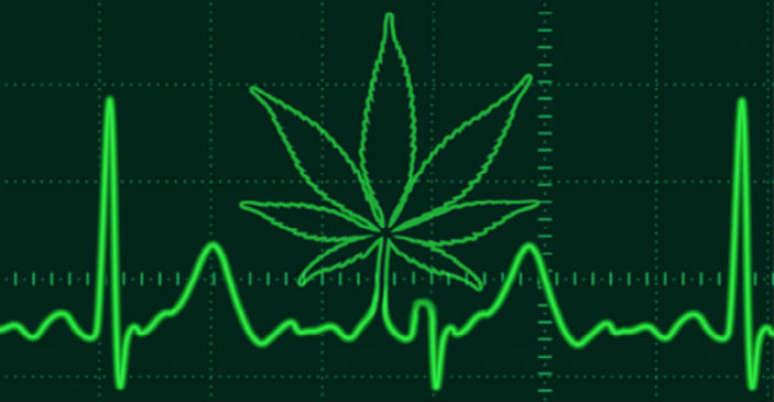 Weed Workout Heart Effects