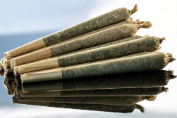 Joints Rolling Papers