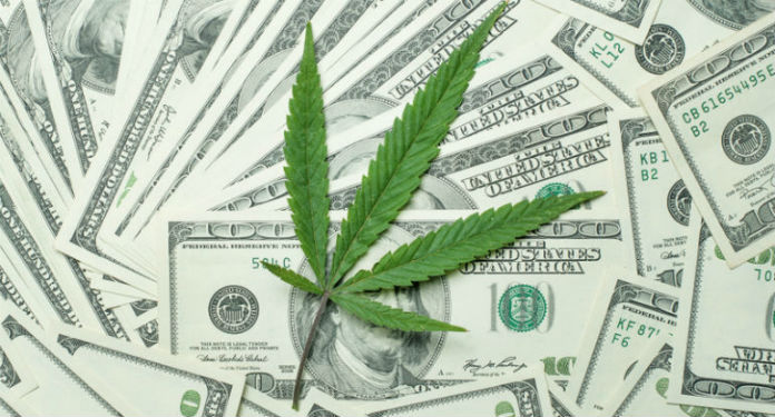 Weed Industry Leaf Money