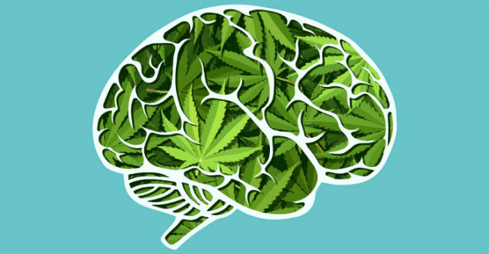Marijuana and Gaming Brain Effects